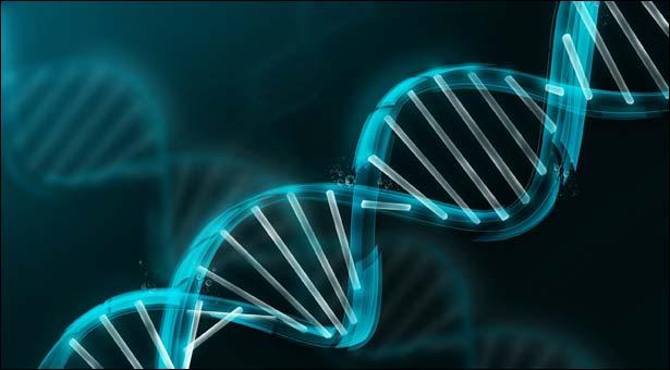 Genler bozulunca kanser oluşuyor
